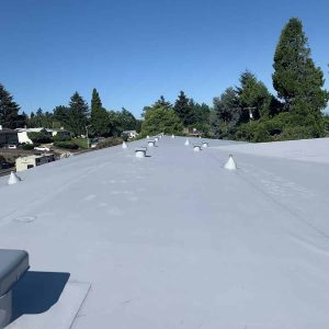 completed-left-view-TPO-on-residental-home-in-portland